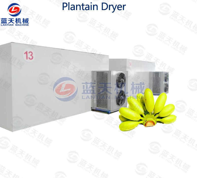 plantain chips dryer