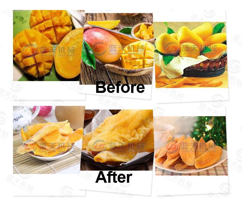 Mango drying effect comparison