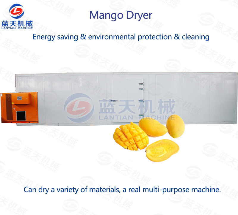 Mango Dryer