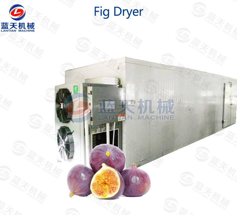 Fig Dryer