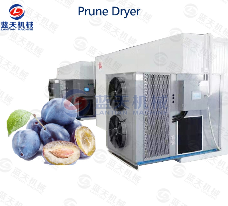 prune dryer