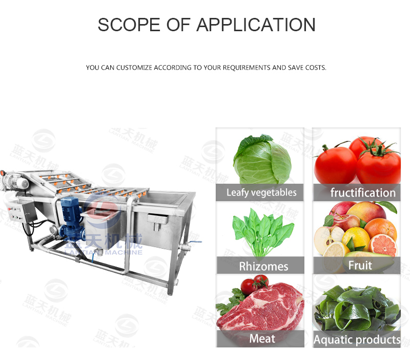lemon washing machine application scope