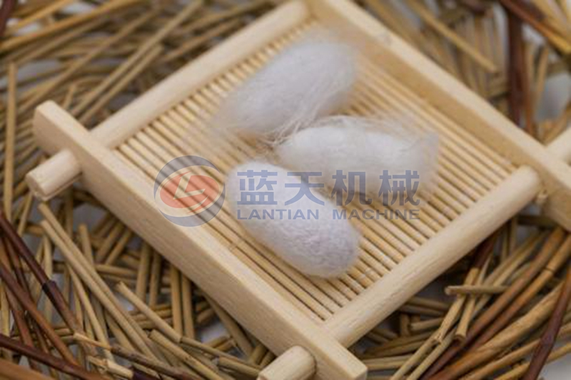 Silkworm cocoon dryer drying effect